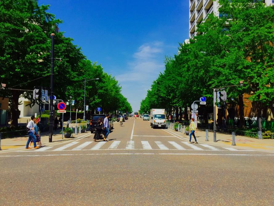横浜日本大通りの歴史の画像