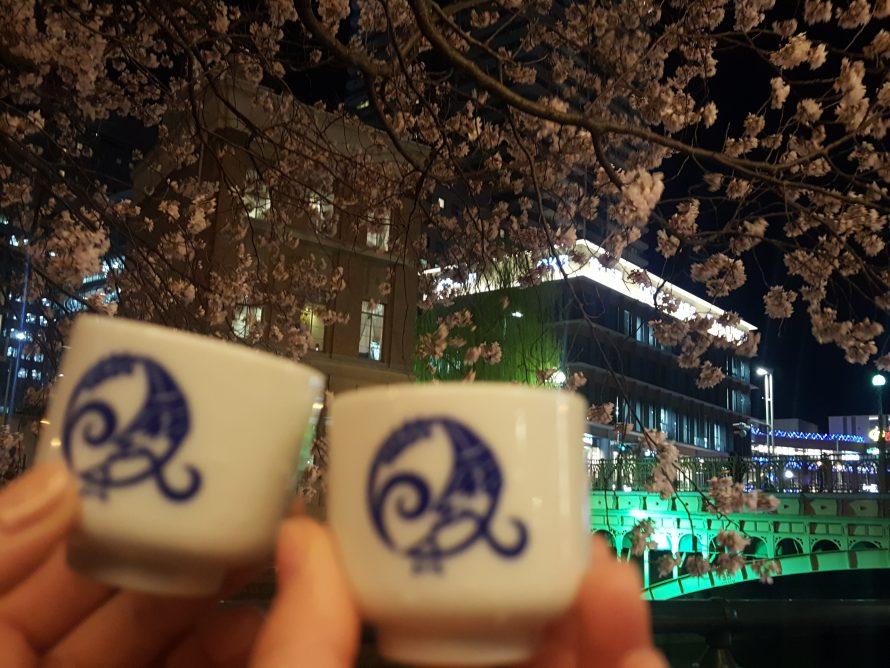 夜桜と共にの画像